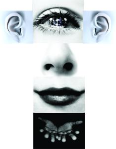 Conciencia sensorial